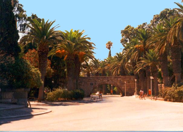 Kos Town bridge - One of the liveliest and most attractive of the Greek Island capitals Kos Town is full of palm trees and flowers with many archaeological remains and imposing Venetian-style buildings...