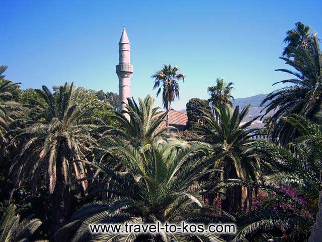 PALMS AND MOSQUE - Mosque between palm trees
